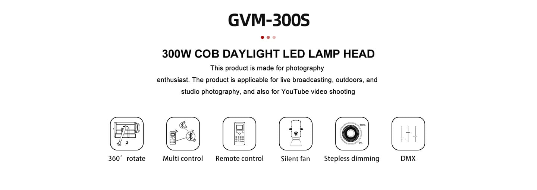 GVM 300S 03